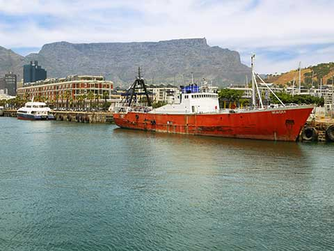 Cape Town voice over services